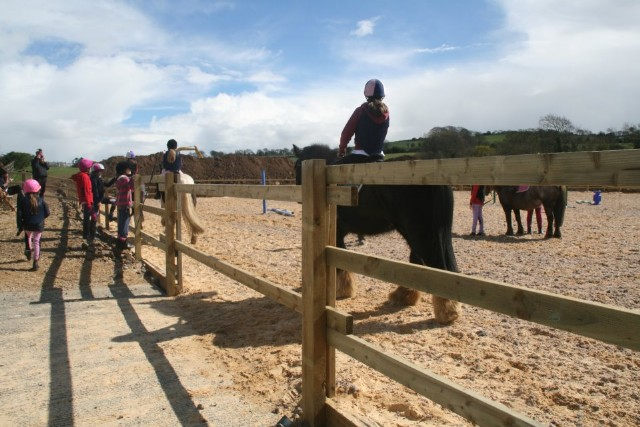 Ardee riding school