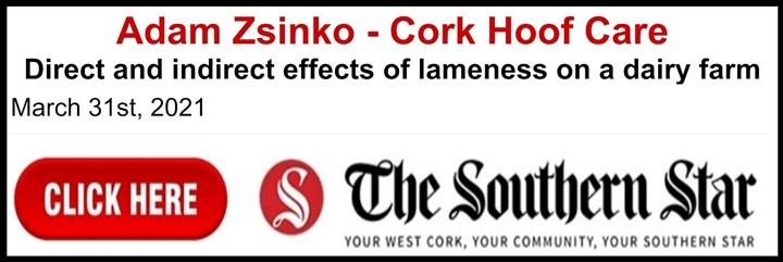 article-on-hoof-trimming in Cork Newspaper