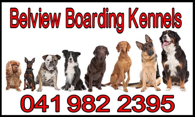 termonfeckin boarding kennels logo