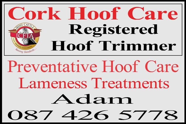 Hoof trimmer Cork, Logo