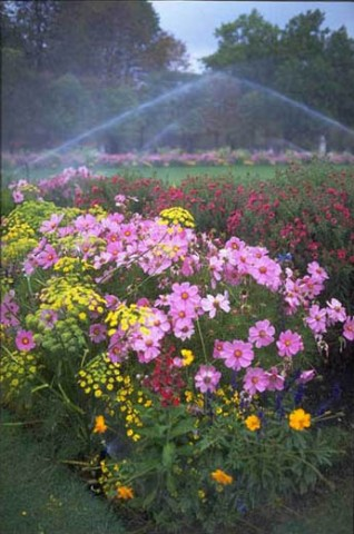 Experts in irrigation installation