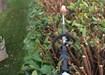 Garden Landscaping Athlone