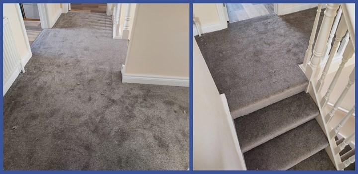 Residential carpet in Monaghan