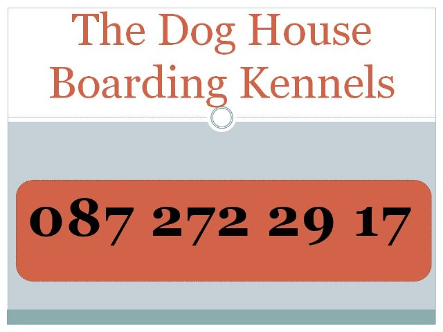 boarding kennels westmeath